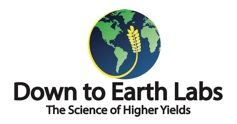 Down To Earth Labs Logo